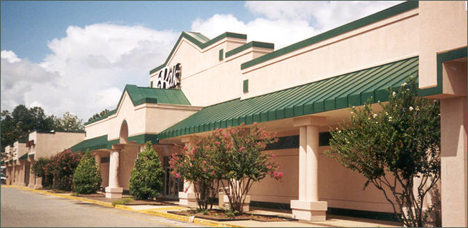Perlis Plaza Shopping Center Space for Lease - Americus GA